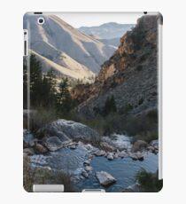 Gold Bug Hot Springs iPad Case/Skin