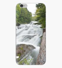 Dragon Fall iPhone Case
