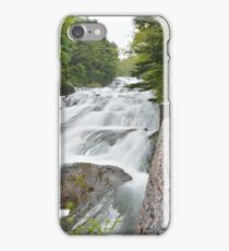 Dragon Fall iPhone Case/Skin