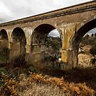 Western viaducts by Delightfuldave