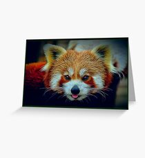 Red Panda with border Greeting Card