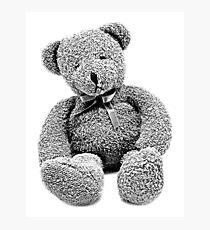 Cuddly Teddy Bear. Vintage Teddy Bear. Antique Teddy Bear. Teddy Bear Engraving. Photographic Print