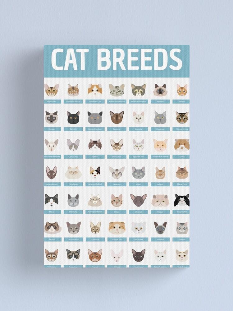 Alternate view of Cat Breeds Canvas Print