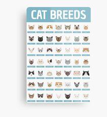 Cat Breeds Metal Print