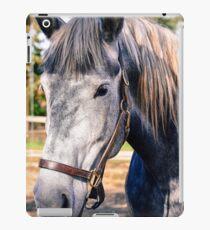 Equine Greeting iPad Case/Skin