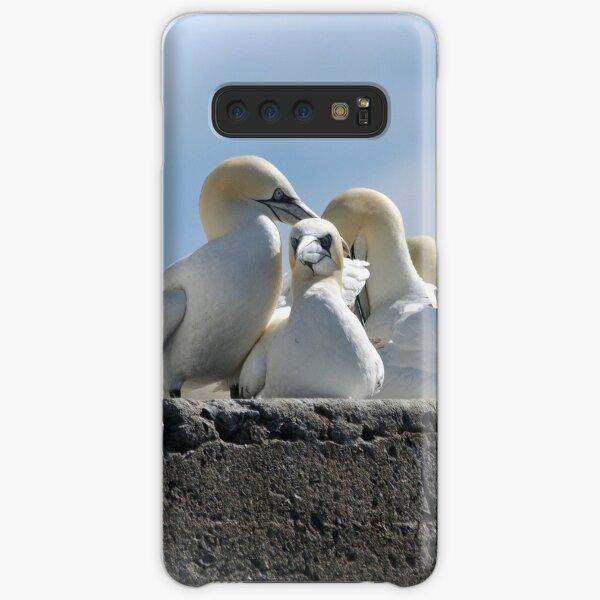Gannets on the Bass Rock Samsung Galaxy Snap Case