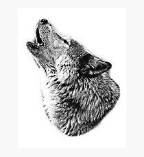 Wolf Howling. Digital Wildlife Image. Photographic Print