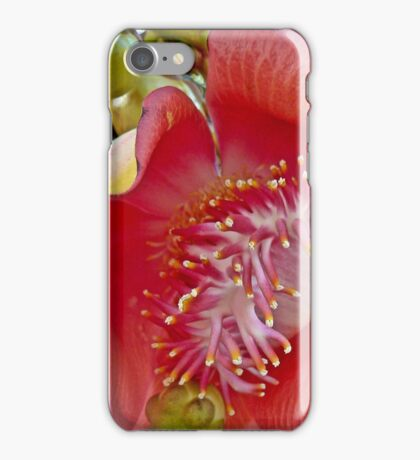 Canonball flower iPhone Case/Skin