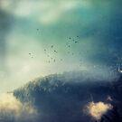 Close to the Edge by Dirk Wuestenhagen
