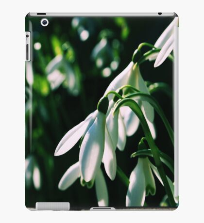 snow drop iPad Case/Skin