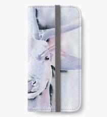 Sweet Hart iPhone Wallet/Case/Skin