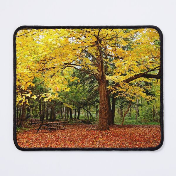 Elora Gorge Camping In Fall Mouse Pad