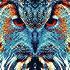 Owl - Colorful Animals by raquelcatalan