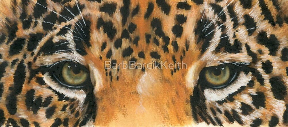Eye-Catching Jaguar by BarbBarcikKeith