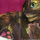 Tortie Paws by Sandra Lefever