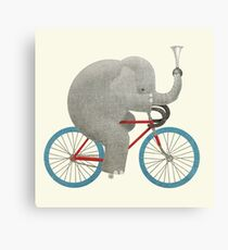 Ride colour option Canvas Print