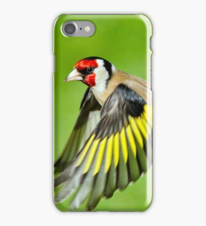 Goldfinch in flight iPhone Case/Skin