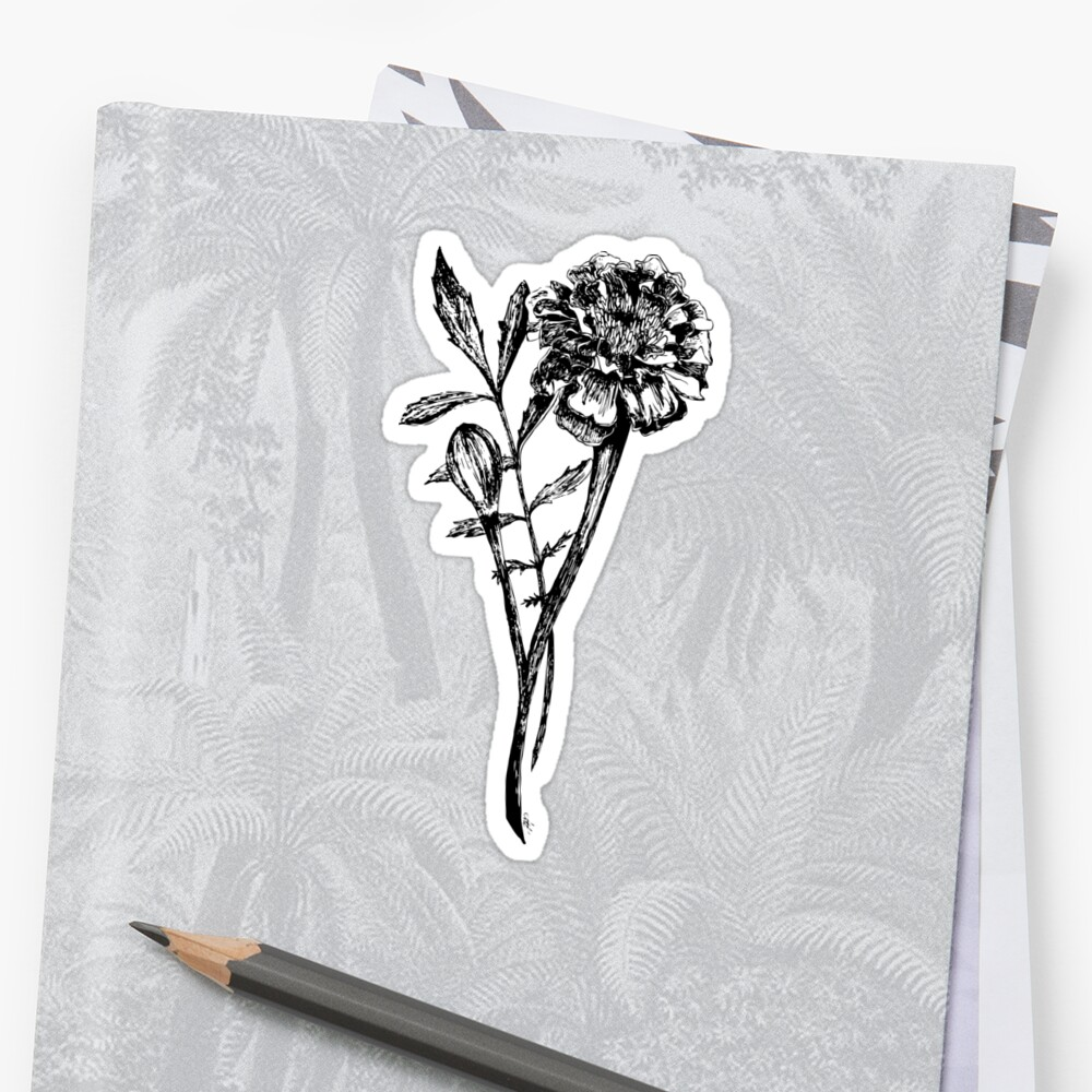 Black and white marigold flower drawing stickers by melissa black and white marigold flower drawing by melissa pedersen mightylinksfo