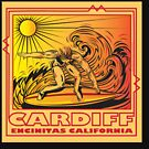 CARDIFF BY THE SEA ENCINITAS CALIFORNIA SURFING by Larry Butterworth