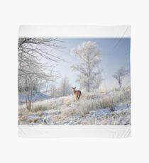 Glen Shiel Misty Winter Deer Scarf