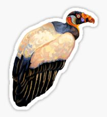 king vulture Sticker