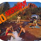 Go Airstream Travel Trailer Vintage Family Road Trip by hilda74