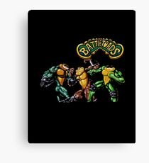 Battletoads 90's Video Game Cool Nintendo Canvas Print