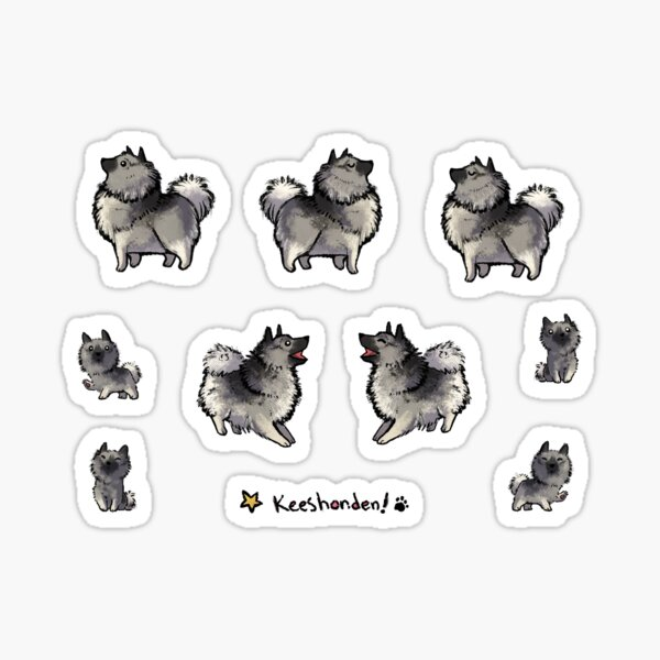 Keeshond - Sticker Pack! Sticker