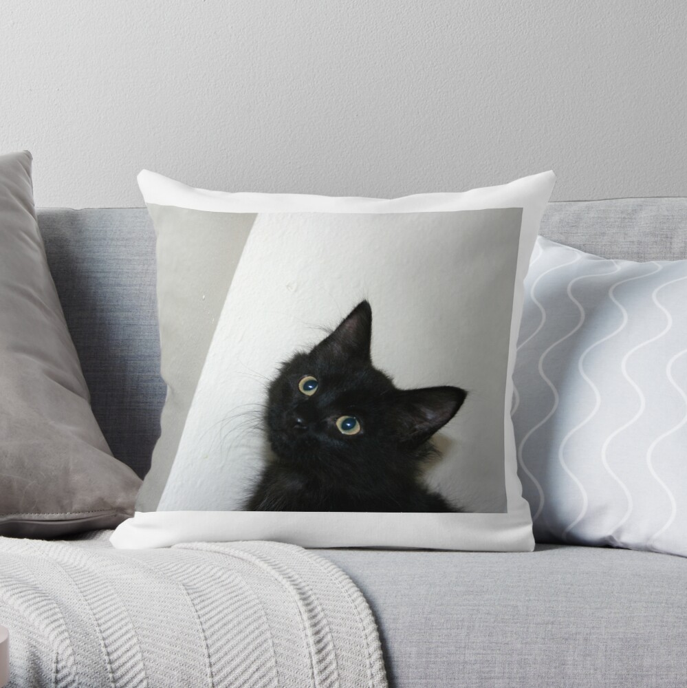 In the Corner Throw Pillow