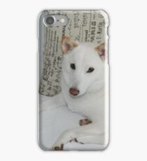 Shiba Inu -- Yuki If you like, please purchase, try a cell phone cover thanks iPhone Case/Skin