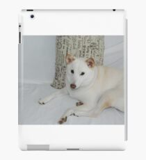 Shiba Inu -- Yuki If you like, please purchase, try a cell phone cover thanks iPad Case/Skin