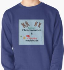 Merry Chromosomes & a Happy Nucleotide Pullover