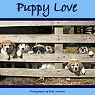 Puppy Love by Doty