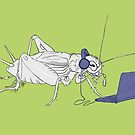 A Cricket by jazzmoth