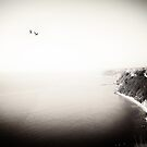 The Sea, The Sky, The Seagulls by Paula Belle Flores
