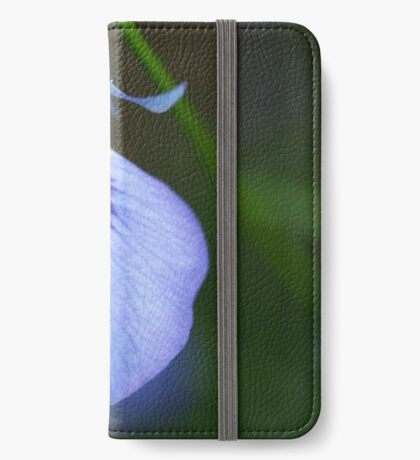 Hybanthus calycinus iPhone Wallet