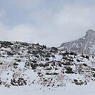 Panoramic Ptarmigan area by zumi
