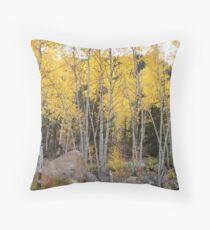 Autumn Colorado Aspens Throw Pillow