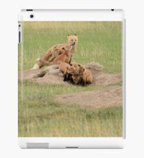 Foxy Family iPad Case/Skin