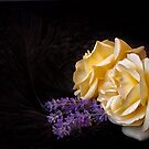 Lavender and Roses with Feathers by Ellesscee