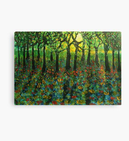 Tulips amongst Bluebells at sunset Canvas Print