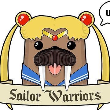 Sailor Warriors by PyroDraco