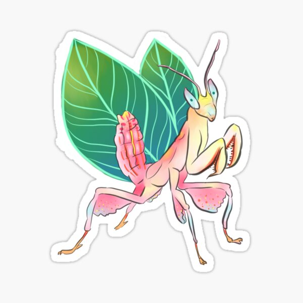 Orchid Mantis is a fairy Sticker