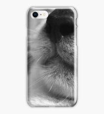 Feline iPhone Case/Skin