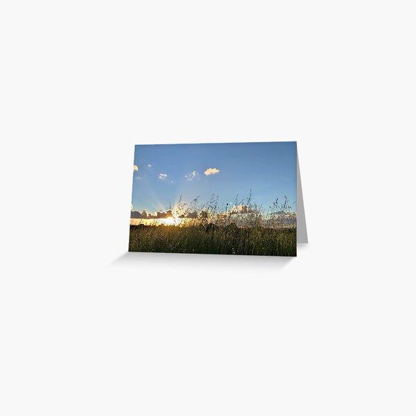 Sunset grass field Greeting Card