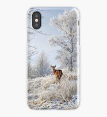 Glen Shiel Misty Winter Deer iPhone Case