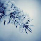 Frostbitten by boxx2genetica