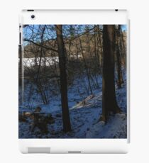 Winter Landscape with Trees iPad Case/Skin