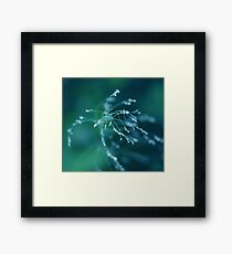 Angelic Layer Framed Print