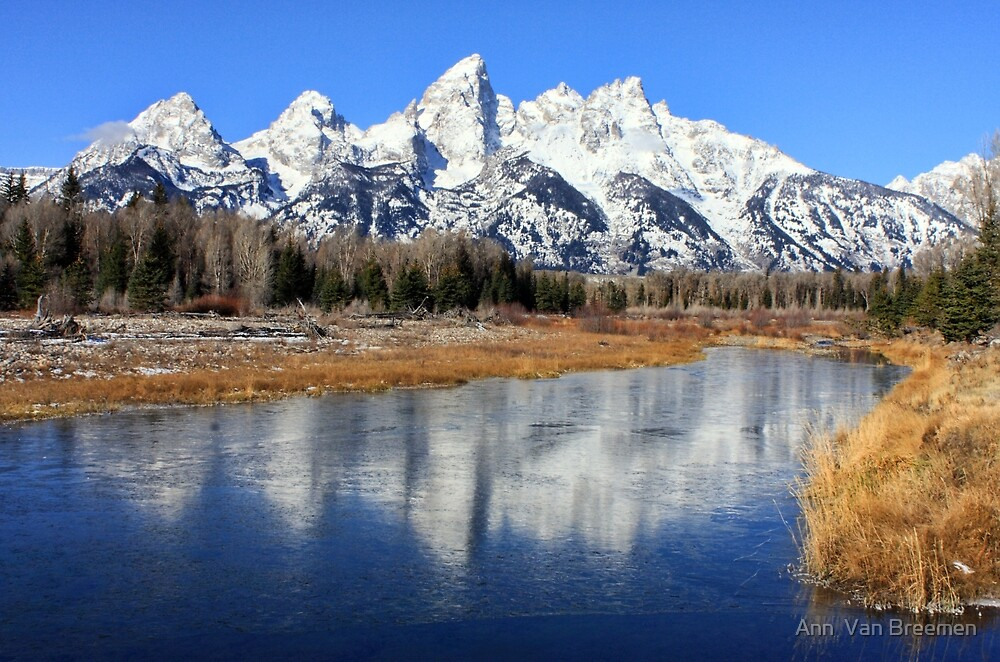 Icy Mirror, Jackson Wyoming. by Ann  Van Breemen